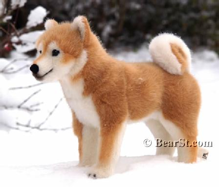 5750 Shiba Inu OMG WANT